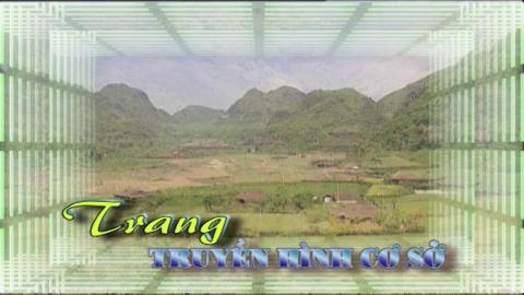Trang truyền hình cơ sở - Số 33/2020